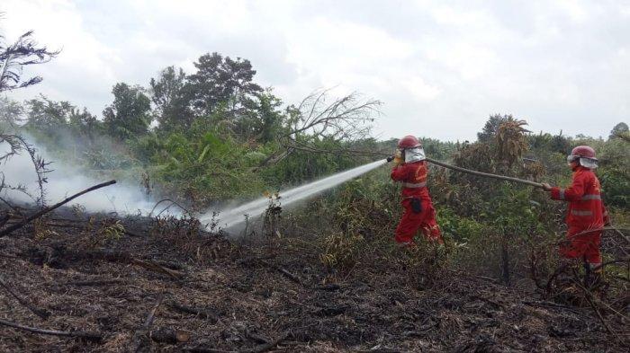 1,6 Ha Lahan Hangus Terbakar Akibat Empat Titik Api Selama Februari