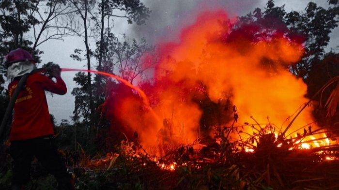 Pelaku Pembakaran Lahan di Sarolangun Belum Ditangkap, Begini Kata Kapolres