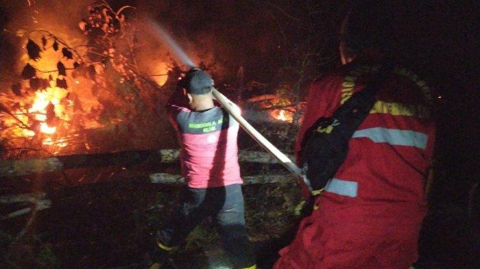 Data Karhutla Sarolangun, Luas Lahan Terbakar Bertambah 7 Hektar