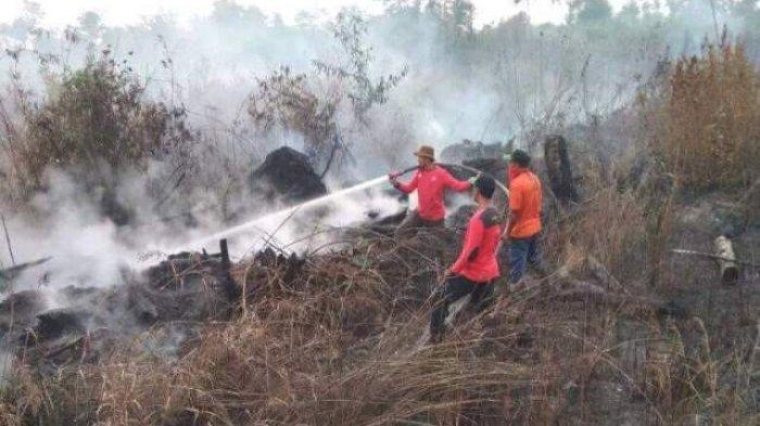 Kemarau dan Titik Api Masih Terpantau, Status Kebakaran Hutan dan Lahan di Tebo Diperpanjang
