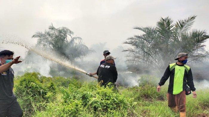 Februari Ini Kebakaran Lahan di Tanjabtim Dua Kali Terjadi, Kemarin Lahan di Desa Mencolok Terbakar