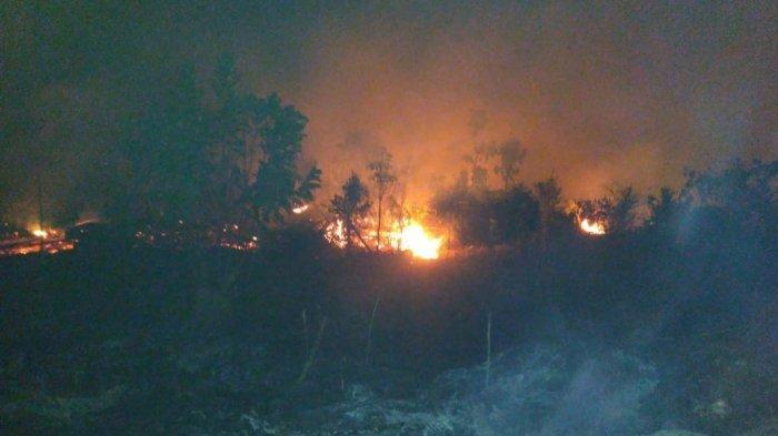 Area Hutan dan Lahan Terbakar di Muarabulian, Aparat Berjibaku Padamkan Api, Diduga Ulah Oknum