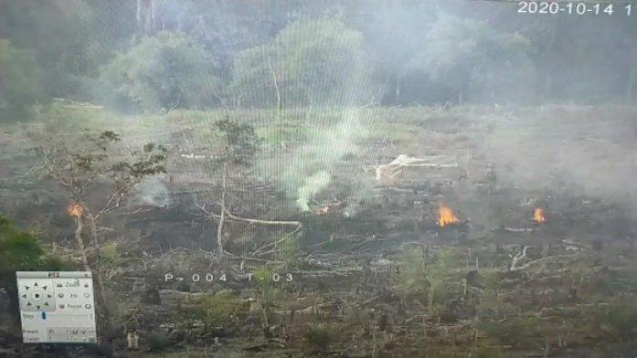 BREAKING NEWS: Oknum Bakar Lahan Setengah Hektare di Limun, Helikopter Diterjunkan Ikut Padamkan Api