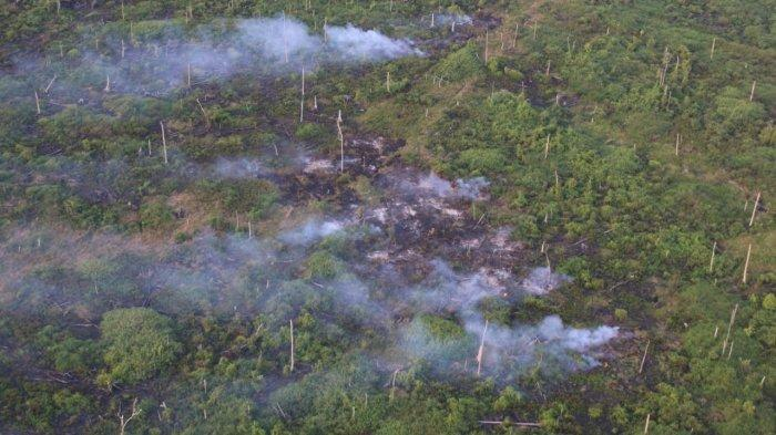 Api yang Membakar Lahan di Kecamatan Sadu BerhasilDijinakan,Petugas Masih Lakukan Pendinginan