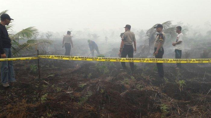 Dikepung Riau dan Sumsel, Kemungkinan Kebakaran Hutan di Jambi Tetap Ada