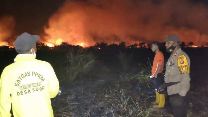 Terpantau CCTV Asap Digital, 40 Hektare Lahan Gambut di Muarojambi Terbakar