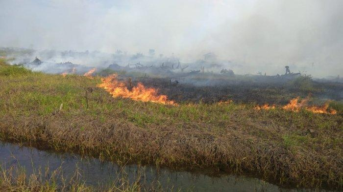 Tim Satgas Kerinci Selalu Pantau Kebakaran Hutan