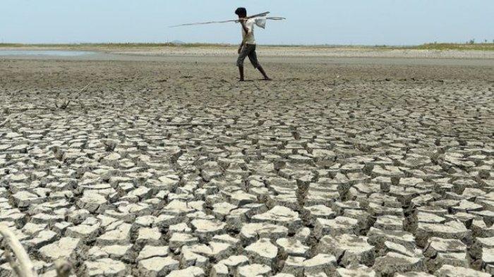 Musim Kemarau di Kerinci dan Sungai Penuh Diprediksi Terjadi Hingga Oktober