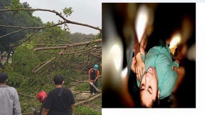 HEBOH Warga Kesurupan Massal di Temanggung Setelah Peristiwa Tebang Pohon Beringin