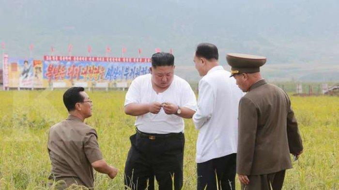 Negara Kim Jong Un Dalam Masalah, Korea Utara akan Memasuki Masa Paceklik Parah Mulai Agustus 2021