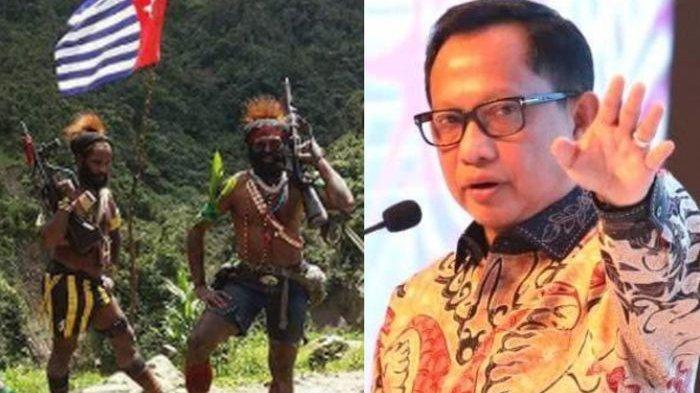 Cara Bungkam KKB Papua Diungkap Tito Karnavian, Bocorkan Strategi Saat 2 Tahun Jadi Kapolda Papua
