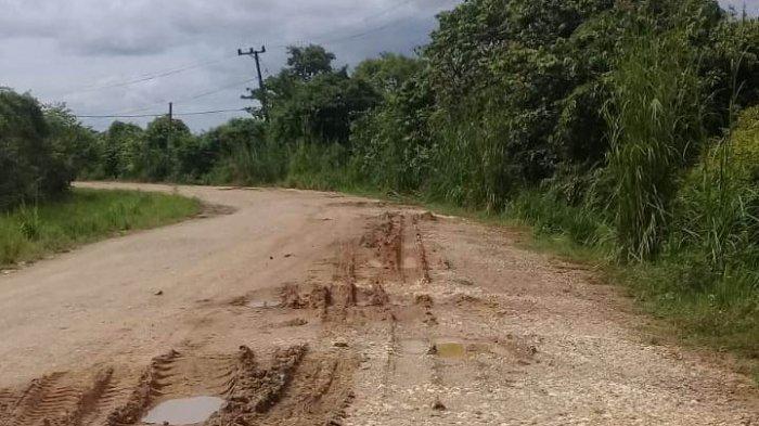 Sudah 21 Tahun Jalan Desa Tebat Patah Muarojambi Tak Diaspal, Hujan Becek, Panas Berdebu