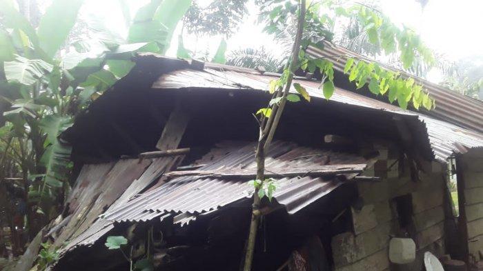 Hujan Disertai Angin Kencang, Rumah Warga di Kemingking Muarojambi Ambruk Tertimpa Pohon