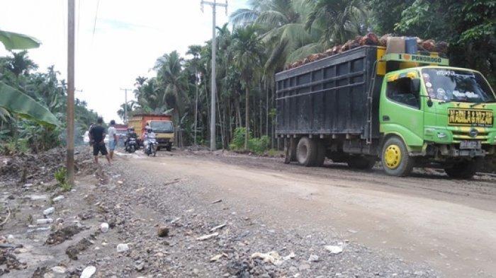 Warga Berharap Pembangunan Jalan di Desa Siau Tanjabtim Segera Dilakukan Agar Tak Picu Kemacetan
