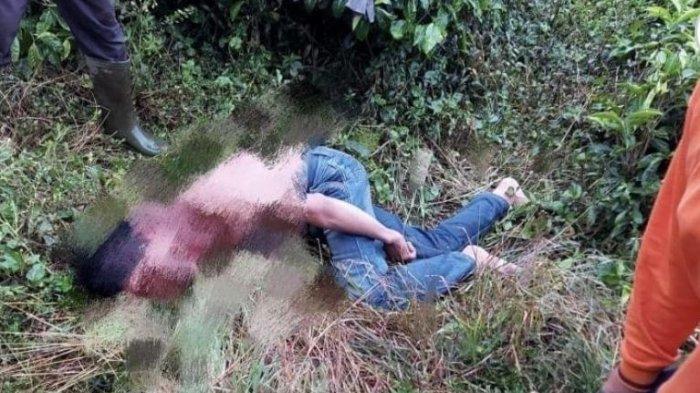 BREAKING NEWS Korban Perampokan Ditemukan Tergeletak Tak Sadarkan Diri di Kebun Teh Kayu Aro Kerinci