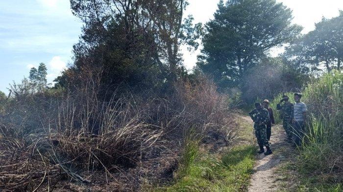 BREAKING NEWS Lahan Kosong di Desa Bakung Muarojambi Terbakar, Pemadaman Gunakan Water Bombing