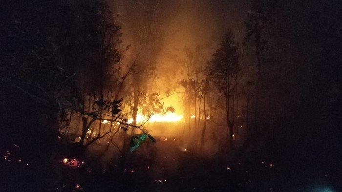 Peringatan Dini BMKG Selasa (10/9) - Potensi Gelombang Tinggi hingga Kebakaran Hutan & Lahan