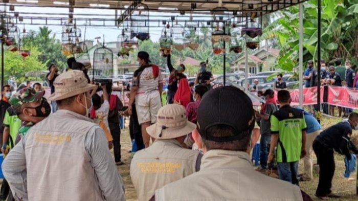 Tak Punya Izin, Lomba Burung Kicau di Kota Jambi Dibubarkan Karena Buat Kerumunan
