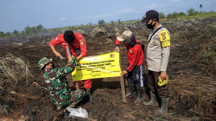 Luas Lahan Terbakar di Kecamatan Sadu Tanjabtim Mencapai 2 Hektare, Ternyata Punya Empat Warga