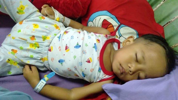Bocah 3 Tahun di Muarojambi Didiagnosa Menderita Leukemia Akut, Butuh 15 Kantong Darah