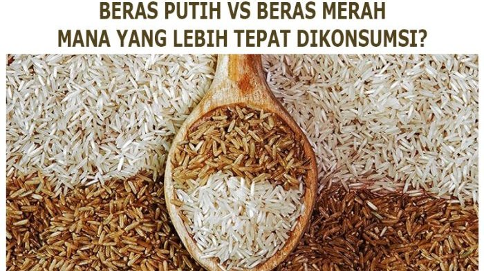 Ketahui 5 Hal Penting Sebelum Mengkonsumsi Nasi Merah, Harus Segera Dikonsumsi