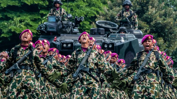 Kejutkan Musuh di Belantara Hutan Kalimantan, KKO Marinir Sampai Bantai Pasukan Inggris & Malaysia