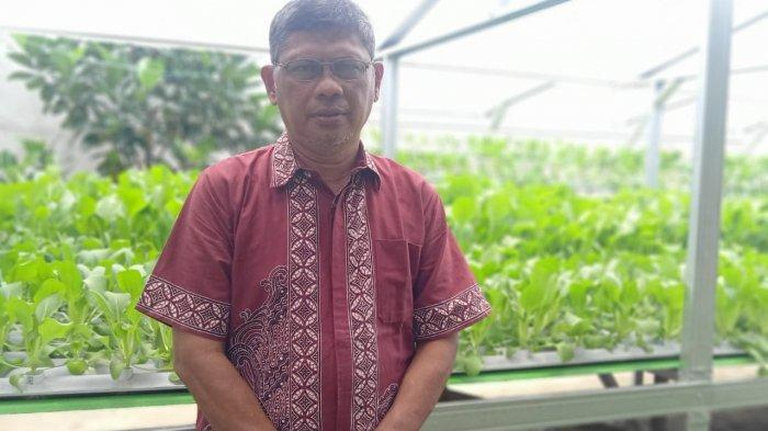 Isi Masa Pensiun dengan Tanaman Hidroponik, Marwan Mulai Pasarkan ke Pasar dan Media Sosial