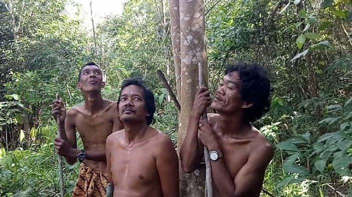 Diduga Diracun, Warga SAD di Muara Kilis Tebo Temukan Banyak Hewan Liar Mati di Hutan