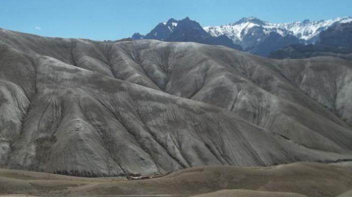 Misteri Yeti, Makhluk Misterius Dari Pegunungan Himalaya, Akhirnya Terungkap Oleh Genetika