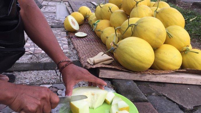 Manto Sidiq (50) berjualan buah melon golden di pinggir jalan raya tepatnya berada di Jalan Jendral Sudirman Muara Bulian, atau bisa datang ke kebunnya di perbatasan antara Kelurahan Teratai dan Desa Sungai Buluh, Minggu (27/12/2020)