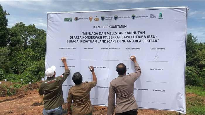 Rehabilitasi Sebagai Bentuk Upaya Pemulihan Area Konservasi Terdegradasi Oleh PT Berkat Sawit Utama