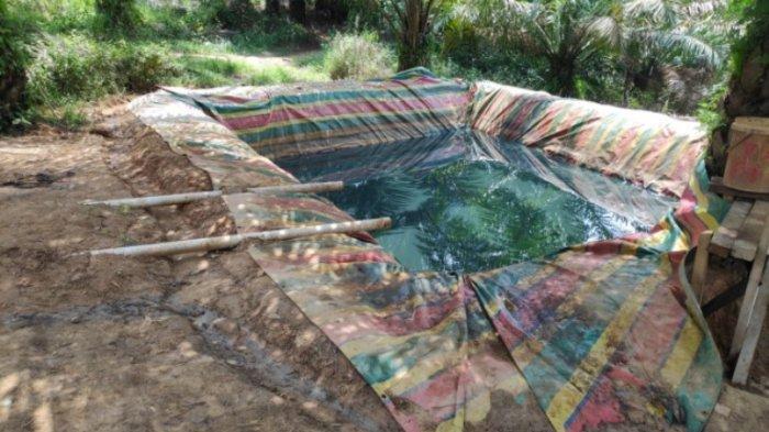 Dua Warga Sumatera Selatan Ditangkap Angkut 2 Ton Minyak Ilegal Dari Kecamatan Bajubang
