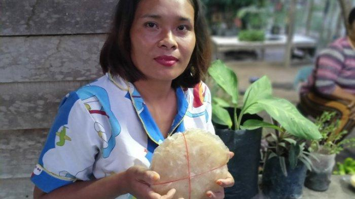 Kreatif, UMKM Putri Jaya Ubah Sisa Pertanian Menjadi Produk Layak Jual