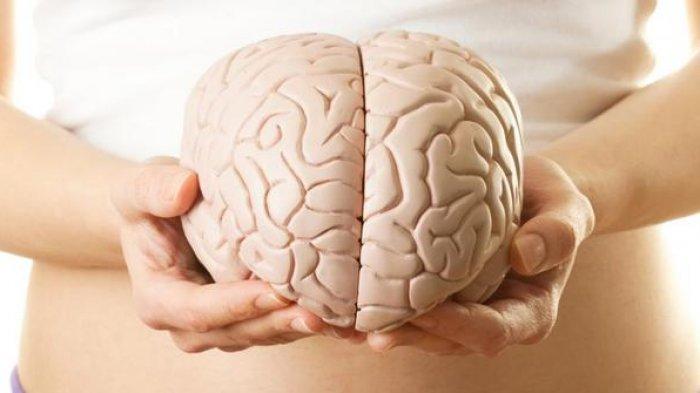 Cara Mengobati Pendarahan Otak, Perlu Lakukan CT-Scan Terlebih Dahulu