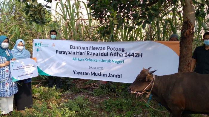 Idul Adha 1442 Hijriah, BSI Salurkan Lebih Dari 3 Ribu Hewan Kurban