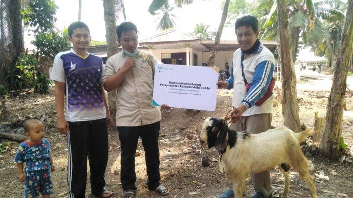 Pada momen Idul Adha 1442 Hijriah, PT Bank Syariah Indonesia Tbk (BSI) menyalurkan lebih dari 3.000 hewan kurban kepada mustahik dan mitra yang membutuhkan di sekitar kantor cabang yang tersebar di lebih dari 45 area di Indonesia tak terkecuali di Jambi.