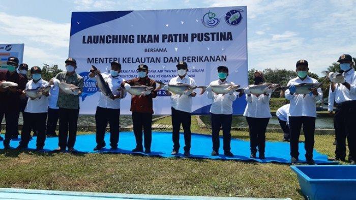 Berhasil Kembangkan Patin Varietas Unggul, Menteri KKP Harap Jambi Punya Kampung Perikanan Budidaya