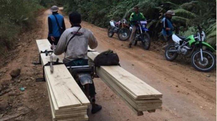 Ilustrasi pelaku Illegal Logging