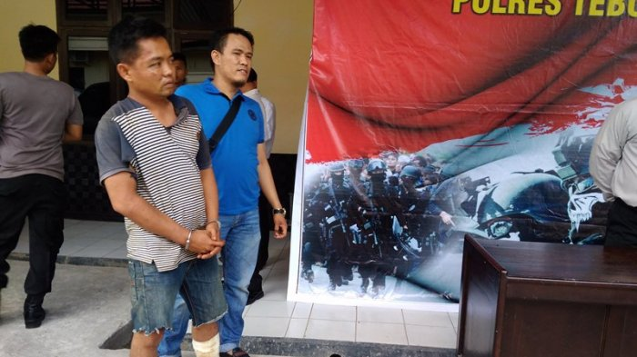 Tiga Ekor Sapi Diikat Dalam Mobil Xenia, Awalnya Polisi Menduga Pencuri Ternak di Aceh Ini Bawa Sabu