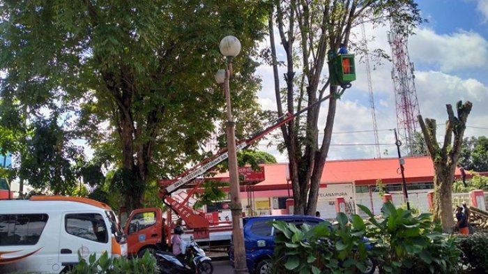 Kota Jambi Pangkas Pohon-pohon, Antisipasi Musim Hujan dan Angin Kencang