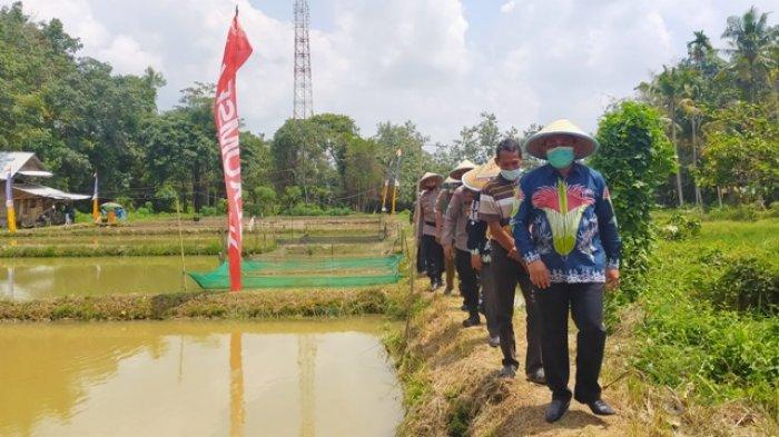 Potensi Cukup Besar, Pemerintah Kabupaten Bungo Siapkan 70 Hektare Lahan Perikanan
