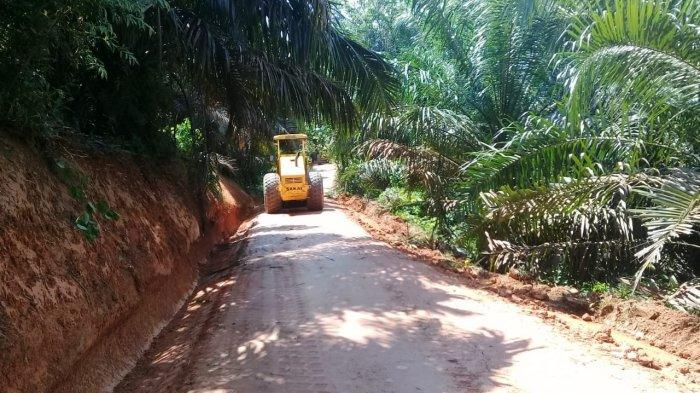 Pemkab Batanghari Terima Alokasi DAK untuk Bangun Jalan Produksi Sepanjang 3 Kilometer