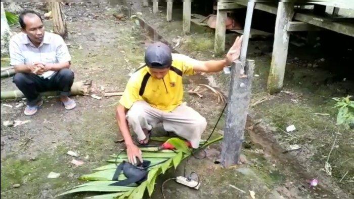 Tidak Ada Sinyal Telepon, Warga Desa Sungai Terap Tanjab Barat Andalkan Antena Rakitan