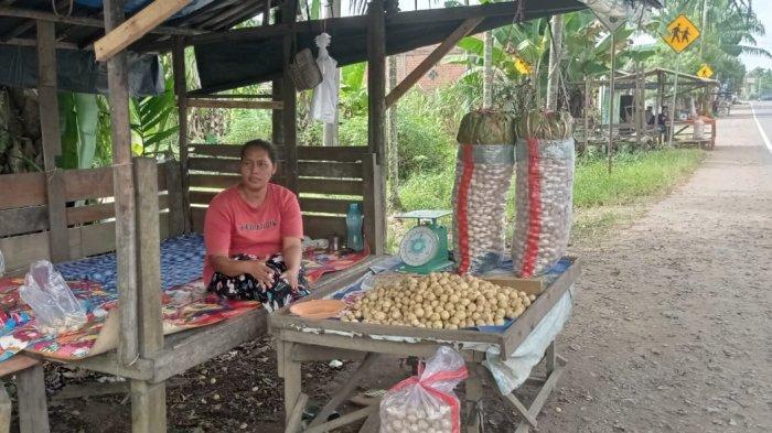 Sebelum Pandemi Covid-19 Sarina Raup Untung Jutaan Rupiah, Kini Pembeli Buah Duku Sepi