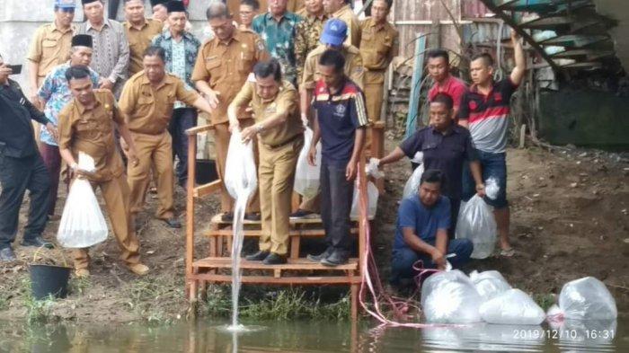 BREAKING NEWS: Ribuan Benih Ikan Langka Disebar di 2 Lokasi di Sungaipenuh,