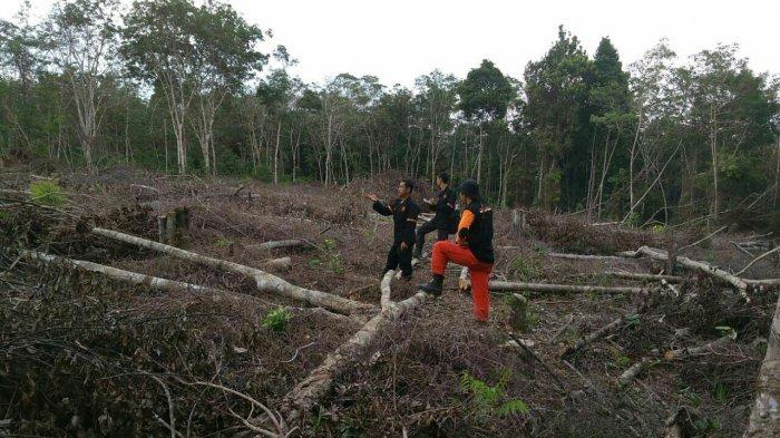 BPBD Merangin Klaim Asap yang Muncul Kiriman Kabupaten Tetangga
