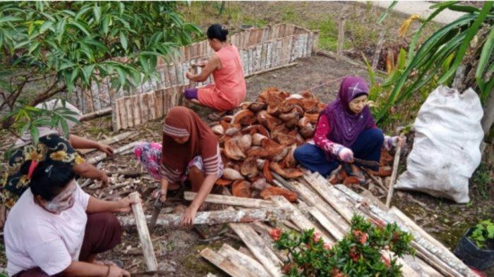 Jaga Gambut, Petani Perempuan Olah Lahan Tanpa Bakar untuk Keluarga Mandiri