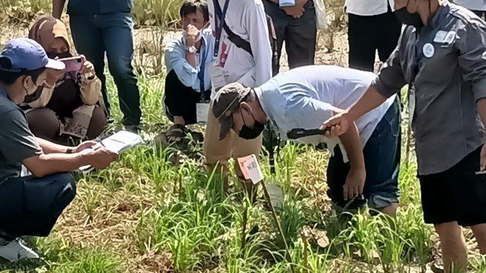 Berikan Pelatihan Kader Udara Bersih Indonesia, Petani Dibentuk Untuk Bertani Ramah Lingkungan