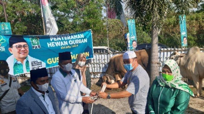 Merayakan Harlah Tahun Ini PKB Jambi Potong Tiga Hewan Kurban Untuk Masyarakat