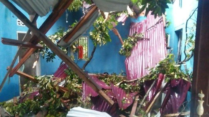 Pohon Tumbang di Sekernan Timpa Rumah Warga Hingga Hancur, BPBD Muarojambi akan Usulkan Bantuan